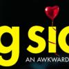 映画「ビッグ・シック」の感想。2017年でベストのラブコメディだ!