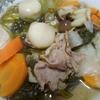 レクチンフリー具だくさん栄養スープ