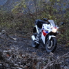 HONDA-CBR125R(JC50) Impressions and Review