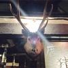 9月5~20日の現場(八丁堀の「罠」、川崎でTinpot Maniax vol.4、上野で児童書読書会、TBSでライブB観覧)