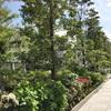 銀座シックス(GINZA SIX)の屋上庭園(GINZA SIXガーデン)は子連れファミリーにぴったりの癒しスポット!