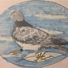 鳩ボードを描く 1