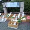下町散歩:人形町朝活編、新鮮野菜をゲットしました~