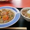 お仕事ひとまず完了 & 昭和の中華料理 & マンダリンオレンジの万年筆