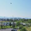 2017.05.22〜31の水道町の様子