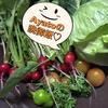 Ayatoの自家栽培で作った晩御飯★前菜まで絶品!