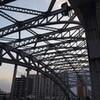 堀切菖蒲園からバスで白髭橋、そして無事帰宅