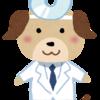 医療の素人がブログを続ける意義はあるのか?googleの話。