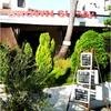 Cafe Brown Sugar 〜ブラウンシュガー西海岸店〜 広い店内でごゆっくりとお過ごし下さい♪