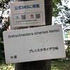 小石川植物園 17