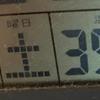たぶん、宮崎の夏は終わった。