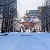 バニラエアで冬の北海道へ (part3・札幌番外編)