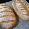 酸っぱいパン(サワーブレッド)への道6 - 失敗したサワー種や間引いたサワー種で焼くパン。これで失敗も怖くない!