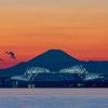 東京ゲートブリッジと富士山のコラボ