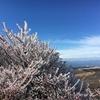 九重山【星生山】【樹氷】【2018年11月23日】【大分】
