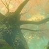 【ゼルダの伝説BotW】10 迷いの森〜コログの森...え、まさかここは、アレか!