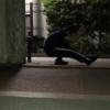 【0円筋トレ】スクワットSTEP6.5 アンイーブン・スクワット【片脚スクワット入門】
