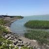 『天竜川河口付近』遠州サーフ(遠州灘)海釣り完全攻略マップ