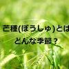 植物の種をまく季節『芒種(ぼうしゅ)』です【今日は何の日?】