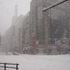 出張からの札幌市内を撮影してみましたよ!
