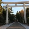 野島崎岬~その③神社や美術館も見所いっぱい