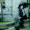 大雨の休日