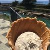 焼きナスアイスwith土佐ジローアイスを安芸市の道の駅大山で食す。