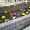 【奥さんDIYに挑戦!】不要になったポストを撤去して花壇を立派にしよう!