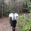 ロードバイク - 朝練コース下見 / MTB - サドルチェック