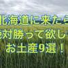 北海道に旅行に来たらお土産はこれで決まりだ!!北海道おすすめ土産9選