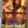 【書籍レビュー】「稀代の名医⁉︎伊良部一郎」空中ブランコ