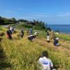 今年の「千枚田」の稲刈りは地元ボランティアと市職員の方々で行われました