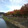風景:新潟散歩【長岡:栃尾地区】