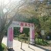 【秋田】きみまち阪公園さくらまつり→比内地鶏の親子丼