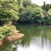 後川池(富山県砺波)