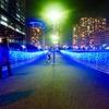 2019年横浜のイルミネーション「ヨコハマミライト」を歩いてみました!