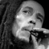 本当に大麻(マリファナ)ってダメなの?吸うだけで得られる効果もある!!