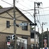 北条政子から民衆まで 信仰を集めた舞岡の桜堂(横浜市戸塚区)