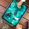 重曹と酢で作る海の泡