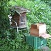 継箱と巣箱の改良(夕涼み対策と着地場所の変更)