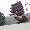 高所恐怖症と飛行機。東京まで子供たちと旅に出る。日本武道館は大きかった・・・!2日目①
