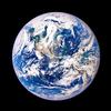 「人類は全生物にとって不要の存在」説を完全論破!