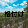 【フランス】ボルドーメドック・格付け5級