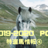 POG 2019-2020シーズン  リーマンの攻略日記③  〜特選馬情報!その4〜
