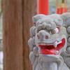 早春の鈴鹿旅|椿大神社と鈴鹿の茶畑