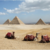 本日よりエジプトへ、帰国まで書き込みはお休みします