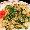 【1食131円】鮭パクチーニラわけぎ魯肉飯チャーハンの簡単レシピ