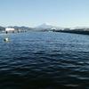 清水 折戸いつもの場所 紀州釣り 1日やっても変化なし