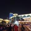 【旅行記】[日本周遊&武漢⑪]武漢観光〜夜〜