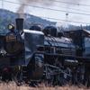 【撮影機材】TAMRON 70-300mm (Model A030)と大井川鉄道へ出かけてきました。
